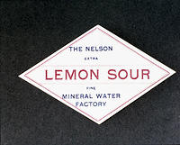 """The Nelson Mineral Water Factory"""